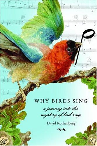 Download Why birds sing