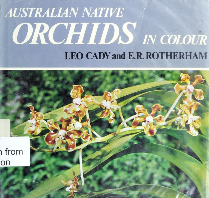 Australian native orchids in colour by Leo Cady